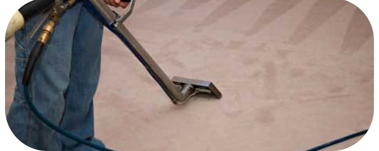 Best End Of Lease Carpet Cleaning Coburg